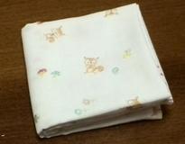 squirrel w-gauze handkerchief