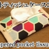 zippered pocket tissues case